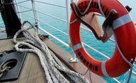 Lifesaver on a cruise ship