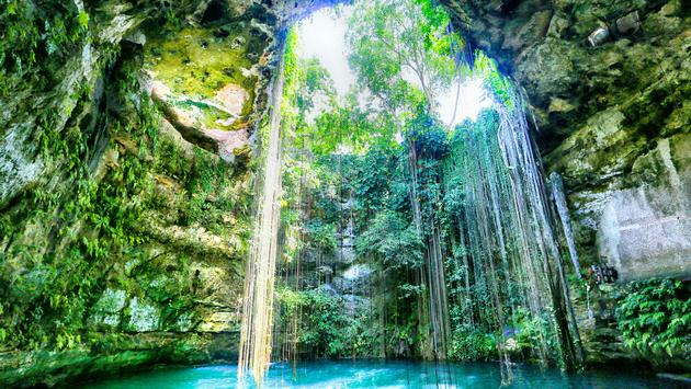 Cenote Ik Kil in the Yucatan of Mexico is a huge limestone hole that has collapsed and sunk, creating a large body of water, now used as a swimming hole. (photo via LRCImagery / iStock / Getty Images Plus)