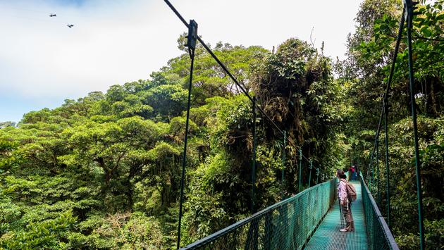 Girl walking on hanging bridge in cloudforest - Monteverde, Costa Rica - adventure in central america (Photo via Simon Dannhauer / iStock / Getty Images Plus)