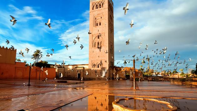 Koutoubia mosque, Marrakech, Morocco (mmeee / iStock / Getty Images Plus)