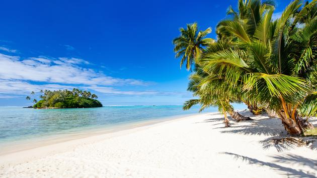 Beautiful tropical beach with palm trees, white sand, turquoise ocean water and blue sky at Cook Islands, South Pacific (Photo via shalamov / iStock / Getty Images Plus)