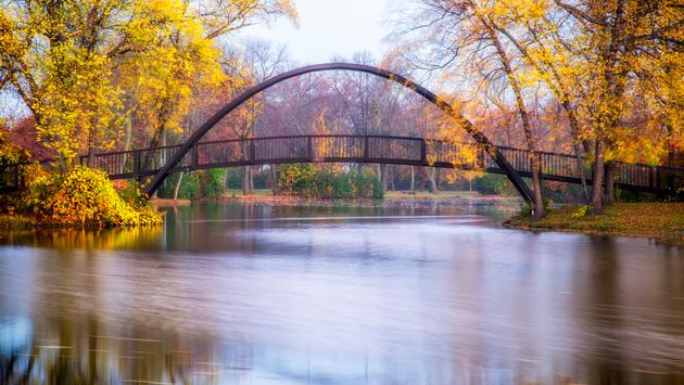 Tenney Park bridge on a fall morning (photo via Dendron / iStock / Getty Images Plus)
