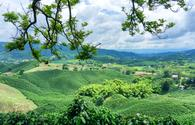 Landscape in Colombia.  (photo via DC_Columbia/ iStock / Getty Images Plus)
