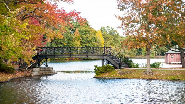 Bridge across pond in Roger Williams Park (Photo via danlogan / iStock / Getty Images Plus)
