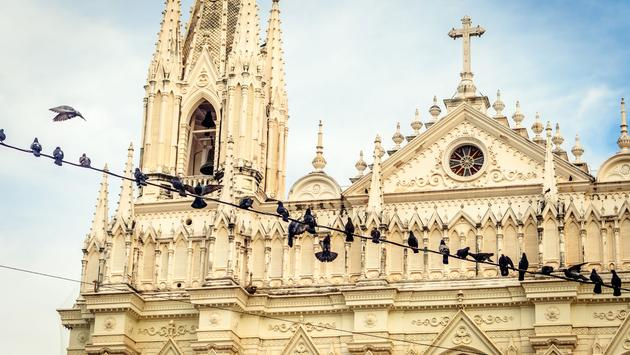 A partial view of the detailed front view of the Santa Ana Cathedral in El Salvador with some pigeons on a wire. (photo via edfuentesg / iStock / Getty Images Plus)