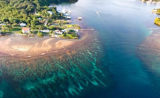 Roatan Island, Honduras.  (photo via joebelanger/iStock/Getty Images Plus)
