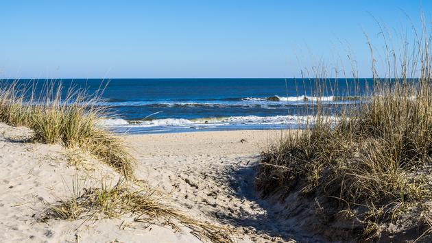 Sandbridge Beach in Virginia Beach, Virginia with beach grass on dunes and ocean background. (photo via Sherry Smith / iStock / Getty Images Plus)