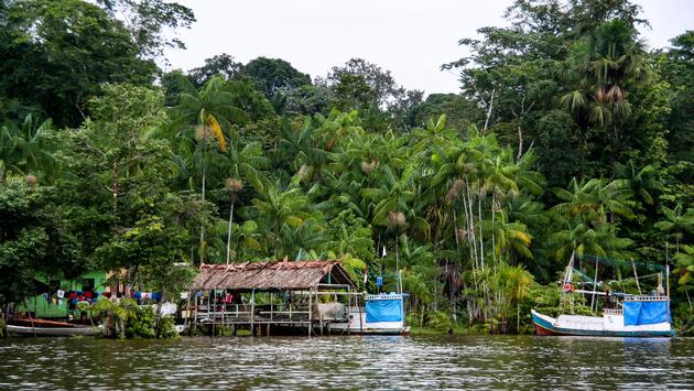 Local village in French Guiana, South America (photo via evenfh / iStock / Getty Images Plus)