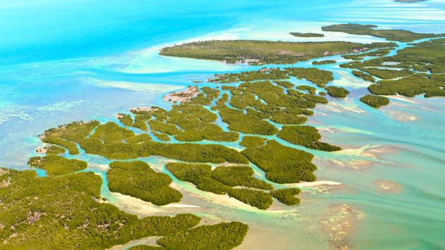 Florida Keys Aerial View (shot from aeroplane) (photo via Bertl123 / iStock/ Getty Images Plus)