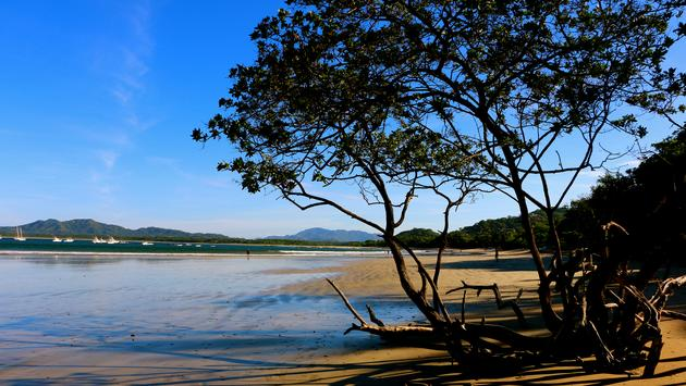 Tamarindo Beach in Early morning sunshine (photo via dgutmann / iStock / Getty Images Plus)