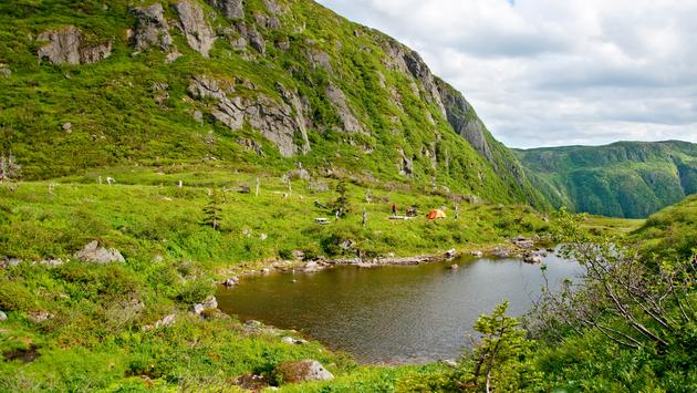 Hiking down the Gros Morne mountain in Newfoundland, and finding some of the hidden beauty of the mountain' (RChoi / iStock / Getty Images Plus)