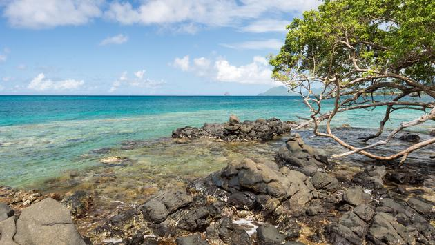 Anse Figuier in Martinique, with Diamond Rock in the distance (photo via Marc Bruxelle / iStock / Getty Images Plus)