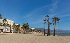 Coast of Almeria Spain with palm trees