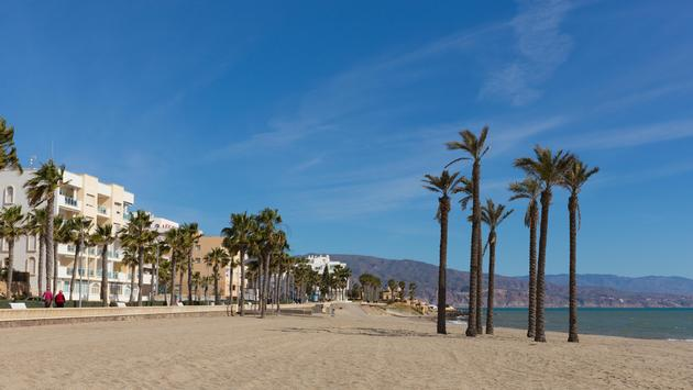 Coast of Almeria Spain with palm trees