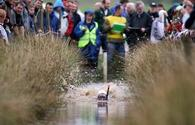 Bog snorkeling is a big hit in the British Isles