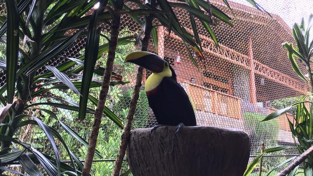 FAM Trip Costa Rica