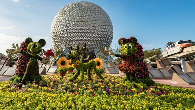 Epcot, Disney, flower