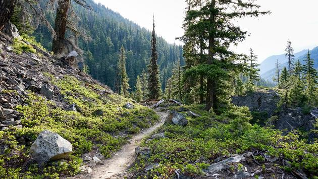 Pacific Crest Trail, North Cascades National Park, Washington, hiking