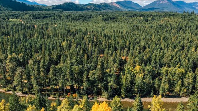 Washington's Suncadia Resort in fall