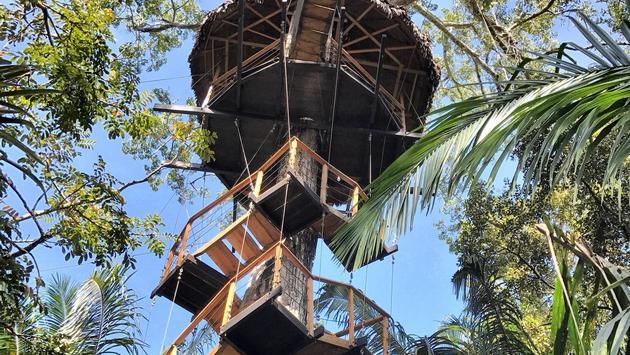 Treehouse Lodge, Paraiso, Peru