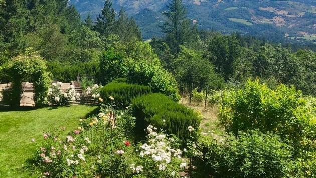 Stony Hill Vineyard in Napa Valley