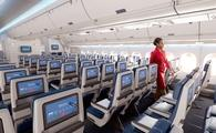 Delta aircraft seatback screens