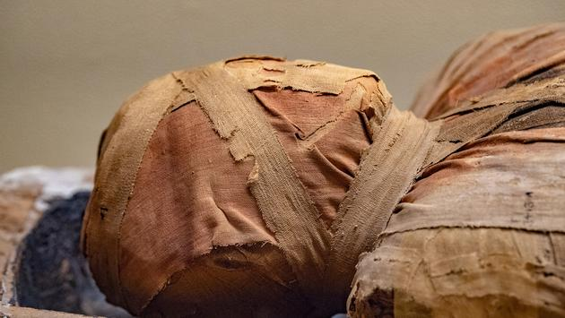 mummy, Egypt, mummies