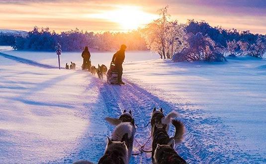 6-Night Winter Safari, from $4,248