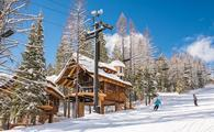 Ski-In, Ski-Out treehouses at Whitefish Mountain Resort in Montana