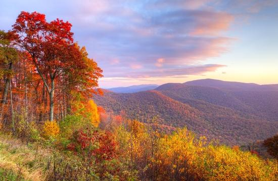 Autumn sunrise in Shenandoah National Park