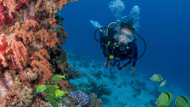 Los Cabos Tourism