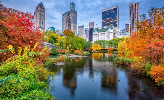 New York City's Central Park during the fall