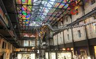 JW Atrium