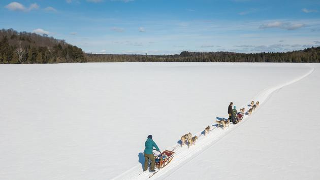 Dog Sledding with Winterdance Dogsled Tours in the Haliburton forest