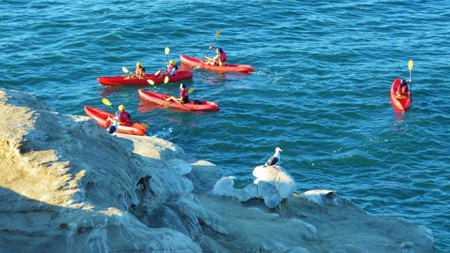 6 not to be missed san diego outdoor adventures travelpulsekayaking at la jolla caves, san diego
