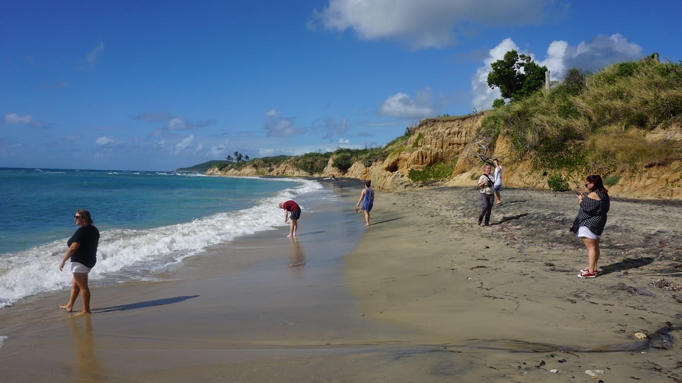Caribbean Unlikely to Match Strong Land and Sea Visitor Growth in 2020