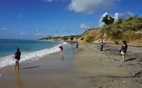 Beach in Vieques Puerto Rico