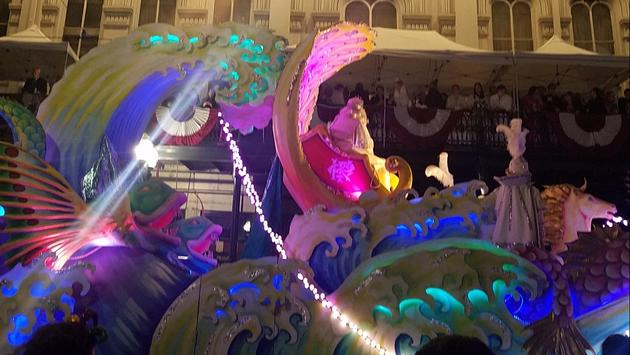 KREWE OF PROTEAUS on Magazine Street