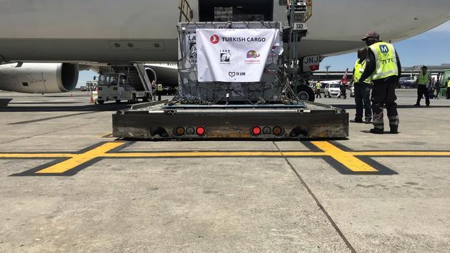 Le système de transport des lions de Turkish Cargo.