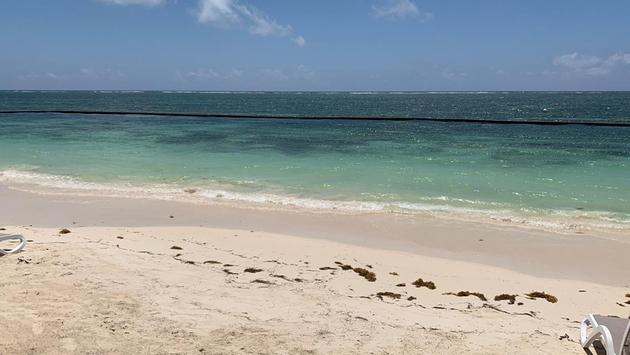 Offshore sargassum collection at Desire Riviera Maya