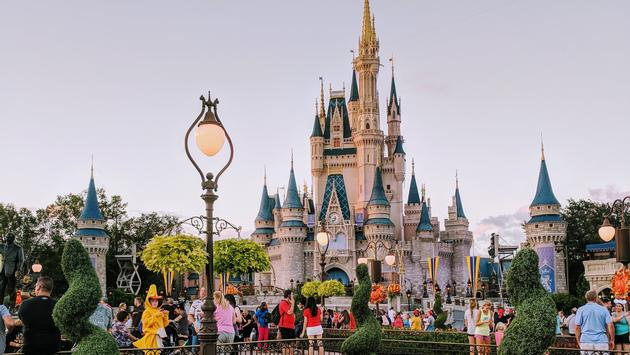 25 Picture Perfect Places At Walt Disney World Travelpulse