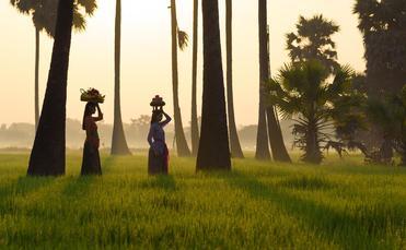 Bali, Indonesia, Regent Seven Seas Cruises