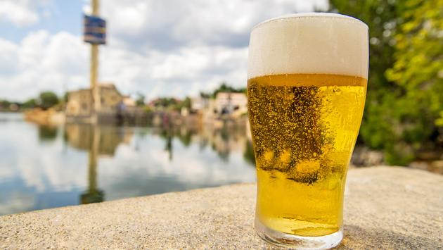 Free beer at SeaWorld Orlando