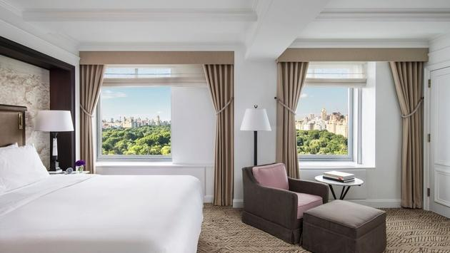 Grand Park View Suite at Ritz-Carlton New York Central Park