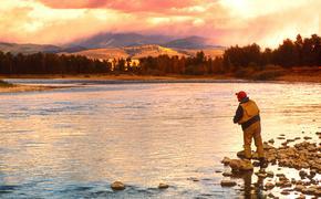 Damon flyfishing on the Blackfoot River near Missoula, Montana