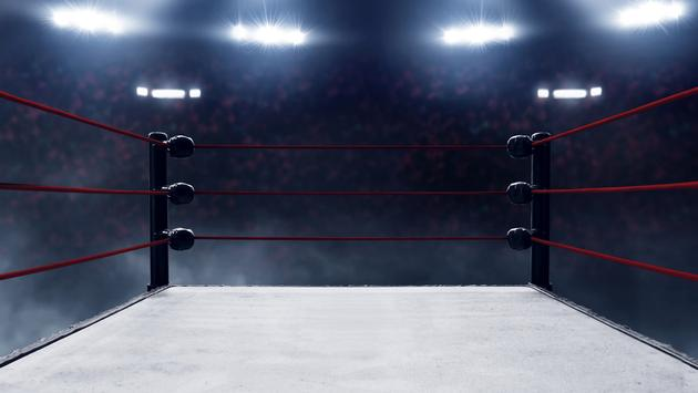 wrestling, ring, travel