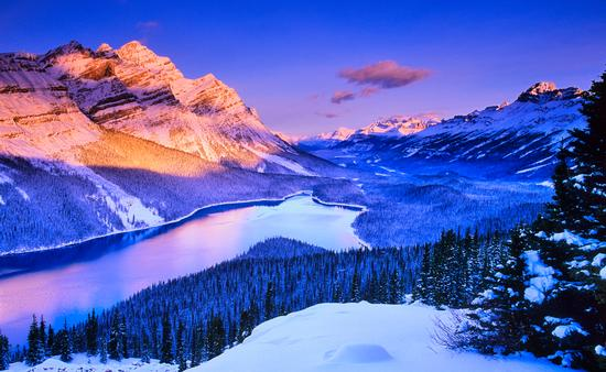 Peyto Lake in Banff National Park in the Canadian Rockies