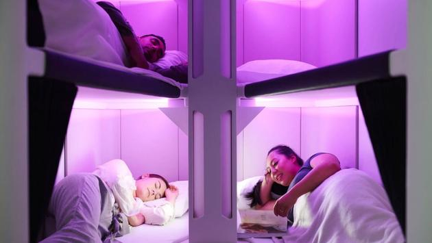 Air New Zealand's Prototype Economy Skynest