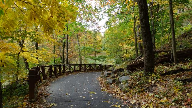 Alapocas Woods Trail, hiking trail, Delaware