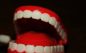 Plastic wind-up chattering teeth